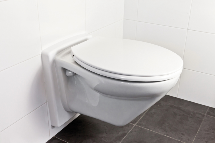 Cool Hoog Laag Toiletsysteem Tr Care Zorgt Ervoor Pabps2019 Chair Design Images Pabps2019Com